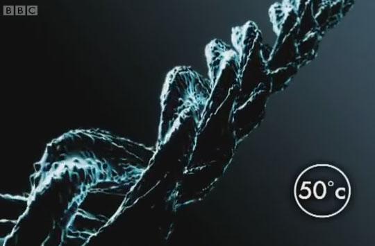 proteinreaction1_160306
